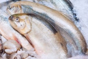 trout superfoods