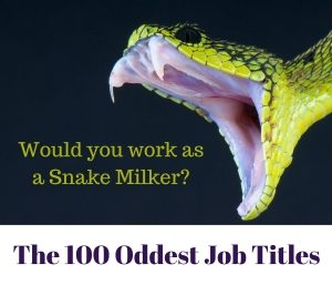Snake with caption 'Would you work as a Snake Milker?""