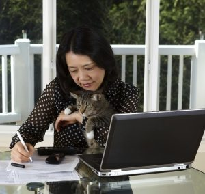 Photo of woman holding her pet while working at home with laptop, calculator, cell phone and papers on top of table and large windows in background