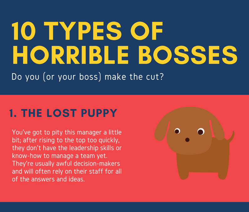types of bosses From corporate jargon-spitting boss to the boss who just wants to be liked, cristen reenacts nine types of bosses (not based on her own bosses, of course.