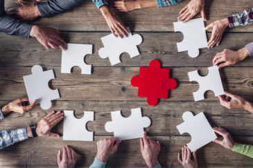 5 Essential Tips for Managing a Team